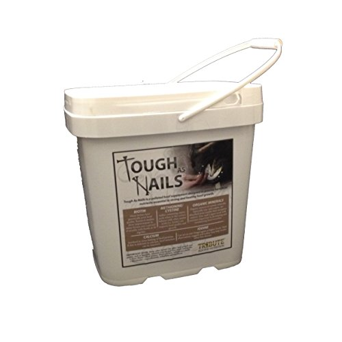 41rPu6AN1CL - Tribute Equine Nutrition Tough As Nails 11lbs Pelleted Hoof Supplement Bucket (1)