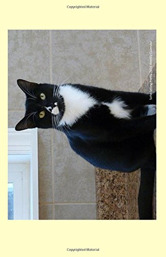 Download Soho Sitting Pretty 2016 Weekly Calendar: 2016 weekly engagement calendar with a cover photo of Soho sitting pretty at Ralphie's Retreat - A pawsitive ... feline leukemia. (Cats of Ralphie's Retreat) ebook