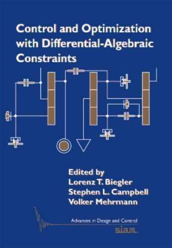 Control and Optimization with Differential-Algebraic Constraints (Advances in Design and Control) by Lorenz T. Biegler (2012-09-12)