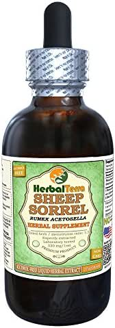Sheep Sorrel (Rumex Acetosella) Glycerite, Organic Dried Herb Alcohol-FREE Liquid Extract 2 oz