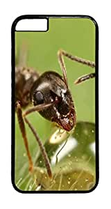 Drinking Ant Animal PC Case Cover for iphone 6 4.7inch - Black