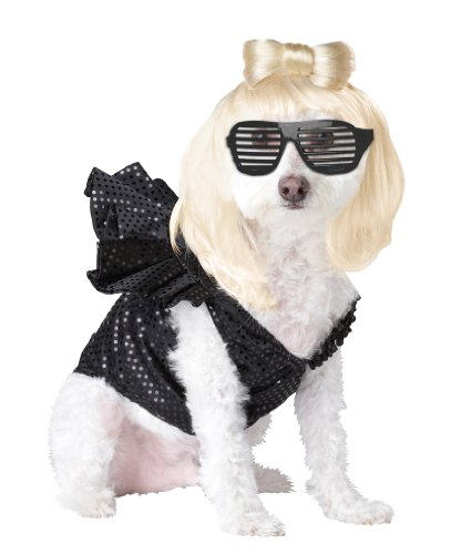 Pop Sensation Dog Costumes (Pup-A-Razzi Pop Sensation Dog Costume, Medium, Black)