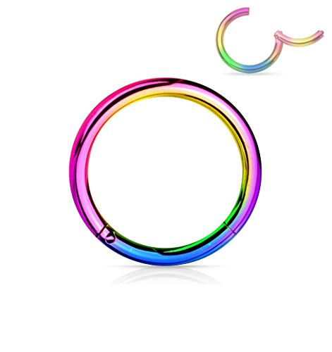 Forbidden Body Jewelry 18G 8mm Surgical Steel Hinged Easy Use Hassle Free Seamless Hoop Body Piercing Ring, Rainbow