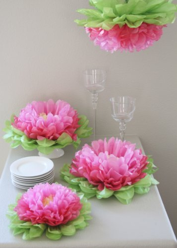 Butterfly Craze Girls Party Decorations - Set of 7 Tissue Paper Flowers ... (Multi Pink)