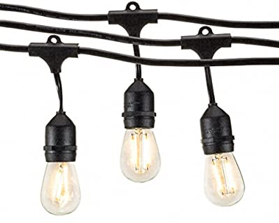 Outdoor String Lights (48ft) with LED Bulbs - Heavy Duty Garden Hanging Market Patio Cafe Pergola Rope String Backyard Lights Pro Weatherproof Commercial Quality Lights 48 Feet Long (With LED Bulbs)