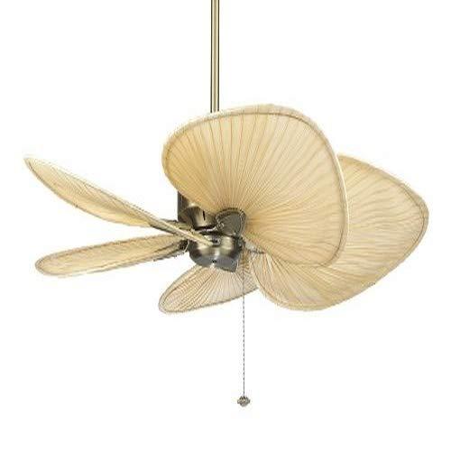 Fanimation ISP1 22-Inch Wide Oval Natural Palm Leaf Ceiling Fan Blade, Set of 5 by Fanimation (Image #1)'
