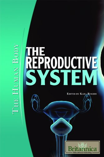 The Reproductive System (Human Body (Rosen Educational Publishing))