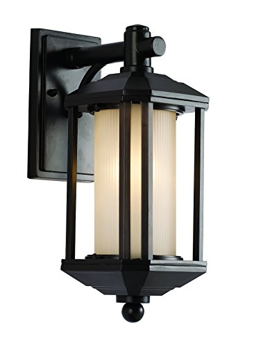 Trans Globe Lighting 40250 ROB Outdoor Reveal 16.25