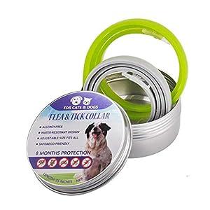 2Pcs Collar Antiparasitos Perros Y Gatos, 8 Meses De ProtecciÓN, Tamaño Ajustable, Impermeable, Contra Pulgas,Garrapatas…