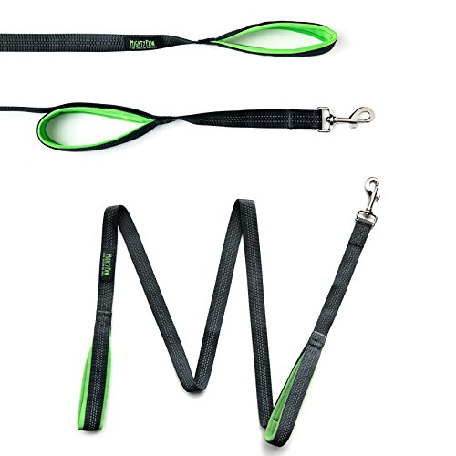 Mighty Paw HandleX2 Dual Handle Dog Leash, Premium Quality 6 Foot Long Reflective Dog Lead with 2 Handles. (Grey/Green) by Mighty Paw