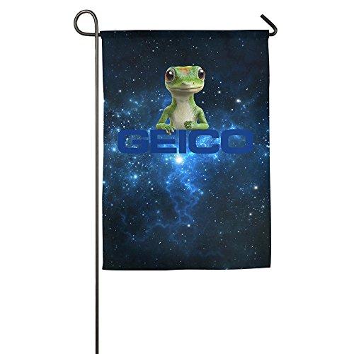 geico-400aeuraeur-popular-flags