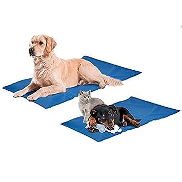Grand Coussin Tapis Rafraichissant Pour Chien Et Chat Cm X - Carrelage salle de bain et tapis rafraichissant chien