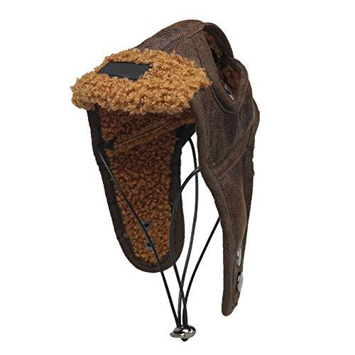 Patgoal S-XXL Pet Dog Cat Warm Aviator Pilot Hat for Autumn Winter (M, Brown) -