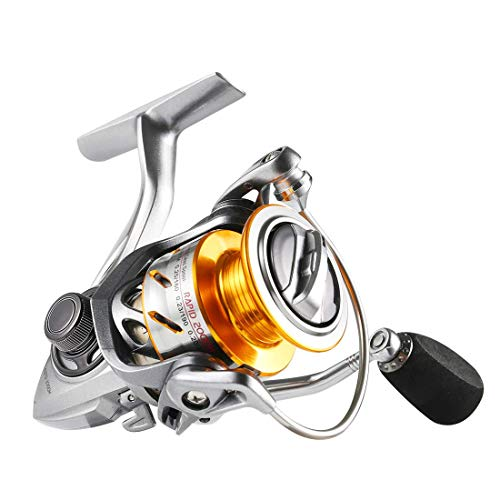 SeaKnight Rapid Saltwater Spinning Reel, 4.7:1,6.2:1 High Speed, Max Drag 33Lbs, Smooth Fresh and Saltwater Fishing Reel