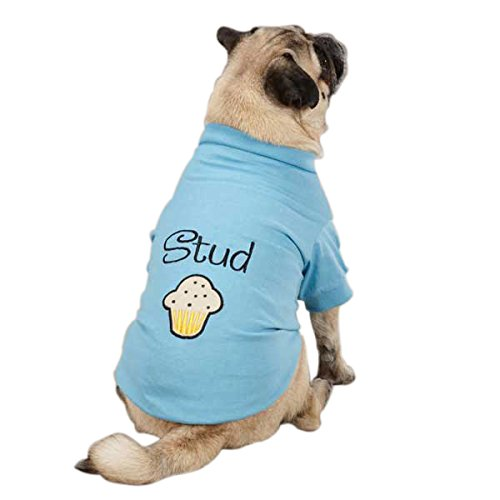 Stud Muffin Dog Tee in Blue