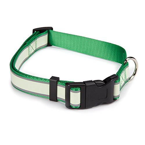 "Casual Canine Glow Nylon Dog Collar, Fits Necks 6"" to 10"", Green"