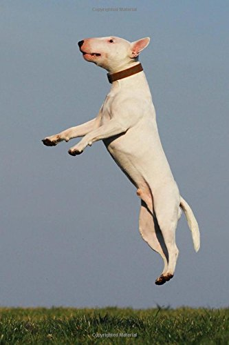 A Bull Terrier Dog Jumping for Joy Journal: 150 Page Lined Notebook/Diary pdf