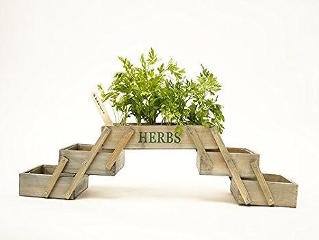 muebles bonitos - Mini Huerta Modelo Plegable: Amazon.es: Hogar