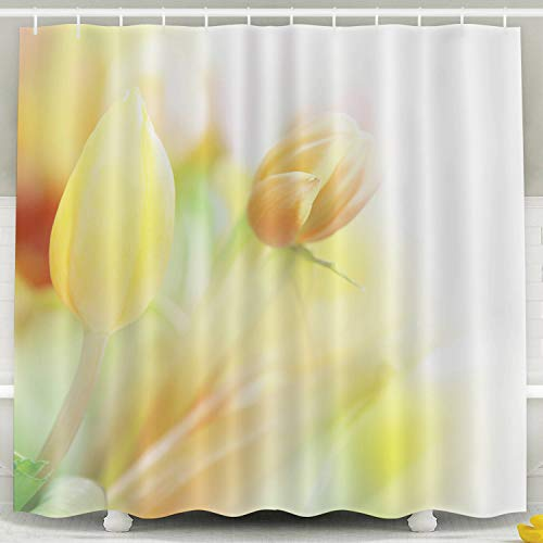 (Musesh Fabric Shower Curtain,Kids Shower Accessories, 78x72 Inch Shower Curtain Home Decoration Set with Hooks Beautiful Tulips Made Color)