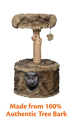 Pet Control HQ Cat Tree Condo 33 Inch Tall Scratcher Post Pet Bed Furniture, Authentic Pear Tree Bark Post with Activity House w/Scratching Sisal, Spacious Perch and Interactive Toy, Brown