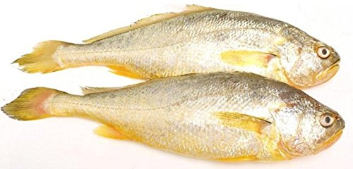 Little spicy seafood snack Yellow croaker 750 gram from South China Sea Nanhai