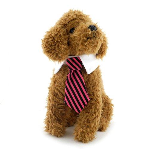 Ranphy Twill Cotton Tie Small Dogs Cats Puppy Tie Neck Tie Gentleman Necktie for Female Male Striped Tie Collar Red L