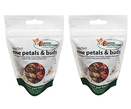 Exotic Nutrition Rose Petals & Bud Treat .63 oz. (2 Pack) – Healthy Treat for Small Animals Review