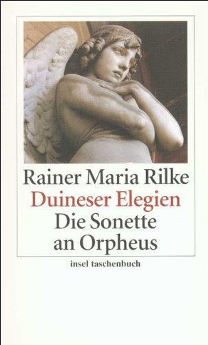 Duineser Elegien. Die Sonette an Orpheus (insel taschenbuch)