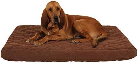 Carolina Pet Orthopedic Jamison Dog Bed