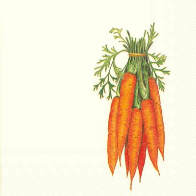 Boston International 40 Count 3-Ply Paper Cocktail Napkins, Carrots from Ideal Home Range