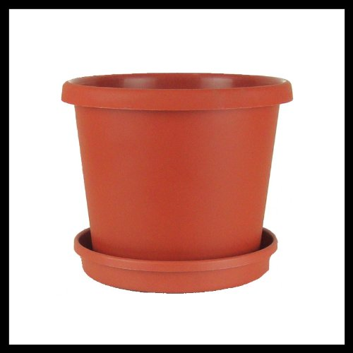10 Flower Pot Saucer Terracotta