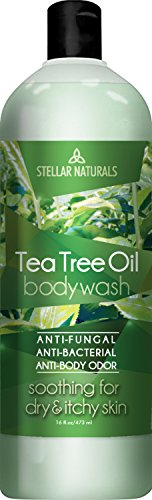 Stellar Naturals Antifungal Tea Tree Body Wash with Eucalyptus and Peppermint Oil Antibacterial Soap, 16 Oz