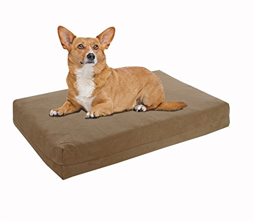 Pet Support Systems Washable Orthopedic Memory Foam Dog Bed,