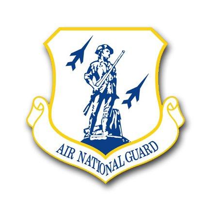 US Air Force Air National Guard Vinyl Transfer Decal Military Veteran Served Window Bumper Sticker Vinyl Decal 3.8