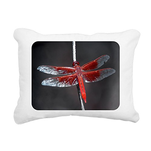 - Rectangular Canvas Throw Pillow Natural Red Flame Dragonfly