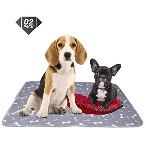 Washable Reusable Pee Pads for Dogs | XL (32