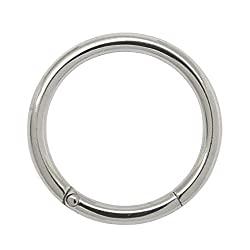 2PCS 16G 14G 12G 316L Stainless Steel Helix Daith Cartilage Lip Piercing Jewelry Nose Hoop Ring Earring Hinged Clicker Seamless Segment Ring (16g 9mm steel)