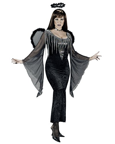Fallen Angel Dark Fairy Gothic Costume Sizes: -