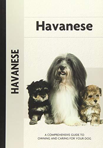 Havanese (Comprehensive Owner's Guide)