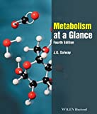 img - for Metabolism at a Glance book / textbook / text book