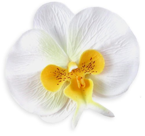 (10) White Yellow Phalaenopsis Orchid Silk Flower Heads - 3.75