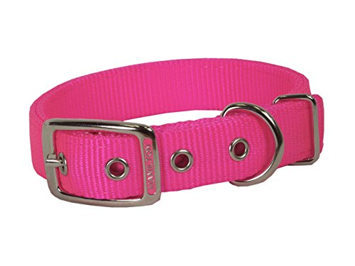 (Hamilton Double Thick Nylon Deluxe Dog Collar, 1-Inch by 22-Inch, Hot Pink)