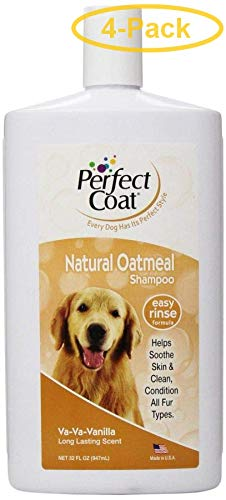 Oatmeal Shampoo 32 oz - Pack of 4 ()