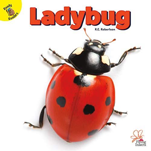Flying Ladybug - Flying Insects Ladybug, Grades PK - 1