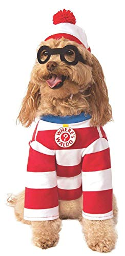 Rubie's Costume Co Where's Waldo Pet Costume - yes, even your pooch can join in on the action!