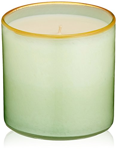 Sea Cottage (LAFCO New York House & Home Candle, Cottage House Amber Sea Foam)