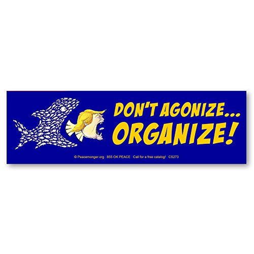 Don't Agonize - ORGANIZE! Anti Trump Color Sticker