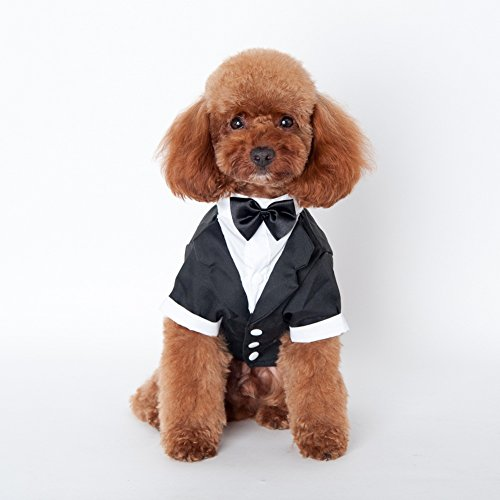 Kuoser Dog Shirt Puppy Pet Small Dog Clothes, Stylish Suit Bow Tie Costume, Wedding Shirt Formal Tuxedo with Black Tie, Dog Prince Wedding Bow Tie Suit,L