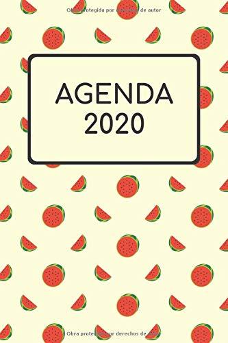 Agenda 2020 Semana Vista 2020 I Diario Organizador Calendario De Bolsillo I Notebook Cuaderno Libreta A5 120 Páginas I Planificador 2028  [Notebook, Calendar] (Tapa Blanda)