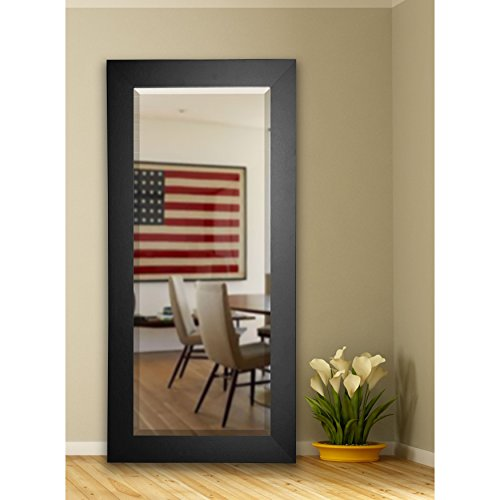 Rayne Mirrors Black USA Versatile Wall Vanity Floor Mirror - A/N
